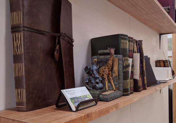 bookseedshelves.jpg